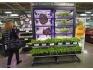 サミット、店内のファーミングユニットで育てた野菜を販売